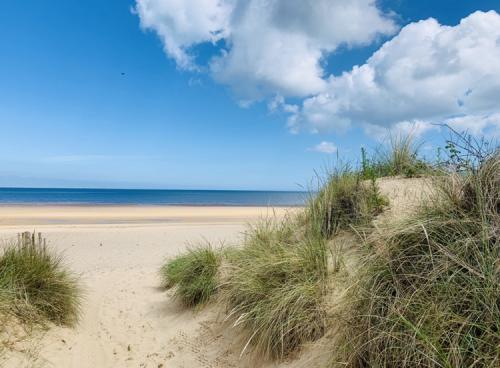 Holme Dunes by Amy Barrett