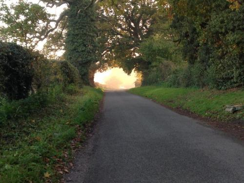 Country Lane by Charlie Watson